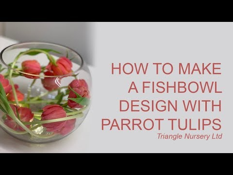 How To Make A Fish Bowl Arrangement With Tulips For Wedding And Event - Wholesale Flowers Direct