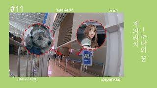 [펫셔니스타 탱구│Petionista Taengoo] EP.11 Preview