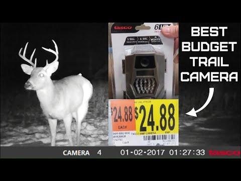 Tasco Trail Camera Review And Setup - 8mp Tasco Trail Camera