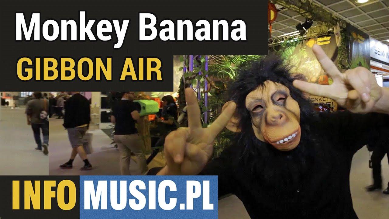 Monkey Banana Gibbon Air Youtube
