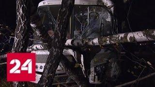 Смотреть видео ДТП под Дмитровом: подробности происшествия - Россия 24 онлайн