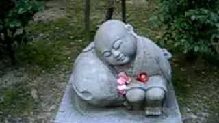 2010年京都府京田辺市にある一休寺に行きました!その片隅で美しい声を...