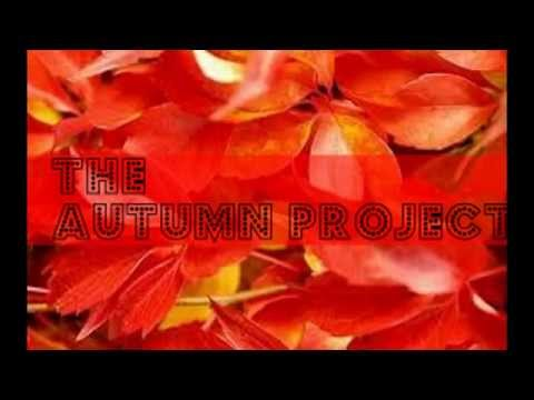 The autumn project - coming soon!