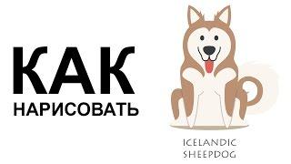 Картинки собаки. КАК быстро карандашом РИСОВАТЬ СОБАКУ(Как нарисовать собаку поэтапно карандашом для начинающих за короткий промежуток времени. http://youtu.be/4XCGho-14Ok..., 2015-06-25T08:29:48.000Z)