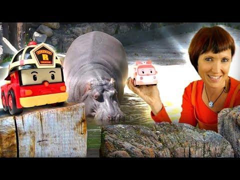 Машинки робокары и Маша Капуки - сборник для детей. - Видео онлайн