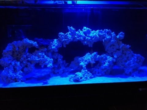 DIY Reef Aquascape (Part 2) - YouTube