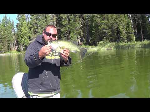 Bass Fishing Crane Prairie Reservoir In Oregon