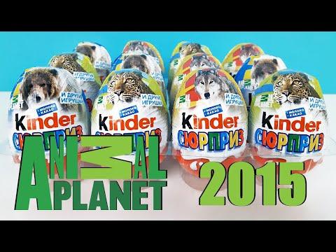 Киндер Сюрпризы ANIMAL PLANET 2015 Обзор Игрушки ПЛАНЕТА ЖИВОТНЫХ Rare Kinder Surprise Eggs Unboxing