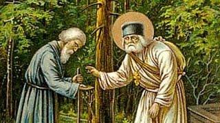 Скачать Преподобный батюшка Серафим Юлия Свавянская