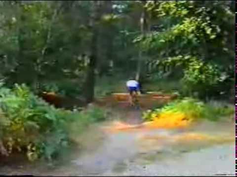 Hills, Sheep & Bicycles