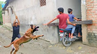 Must Watch New Funny Comedy Video 2021 TRY TO NOT LAUGH   Bindas Fun Masti