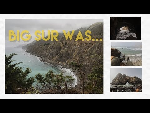 SNEAKING UP ON SEALS IN BIG SUR