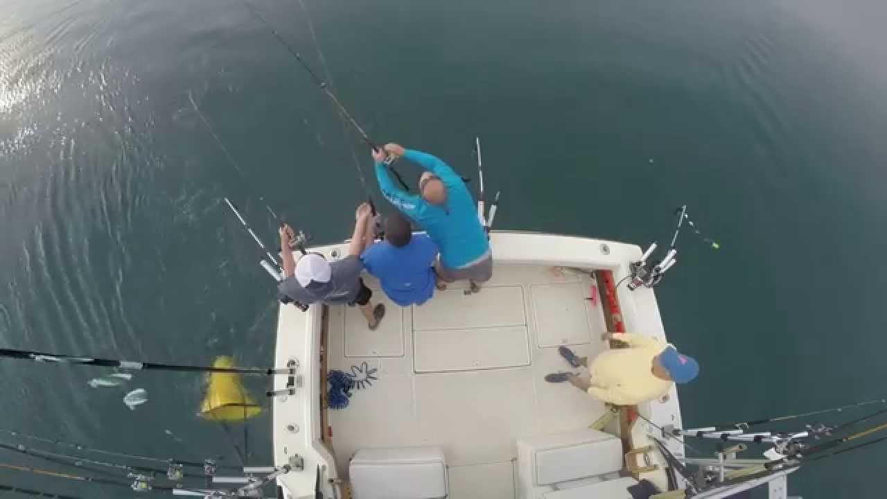Great salmon catch mega bite fishing charters traverse for Michigan city fishing charters