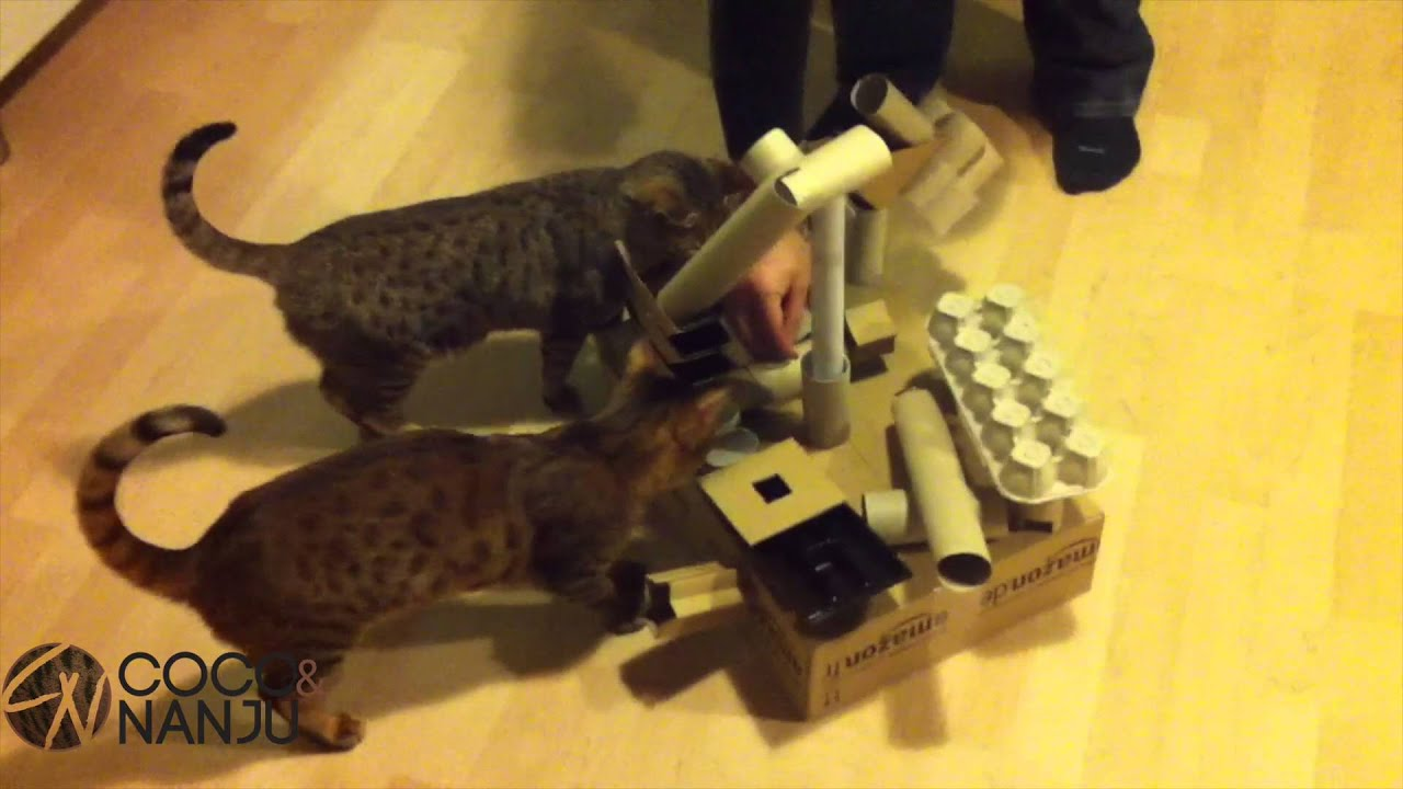 fummelbett f r katzen selbst basteln katzenspielzeug. Black Bedroom Furniture Sets. Home Design Ideas