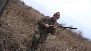 Охота с гончими на лисицу