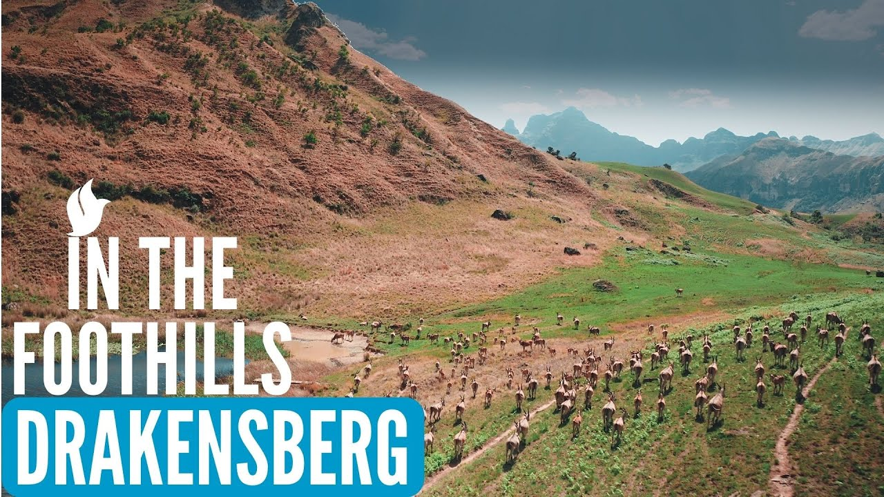 R4600 per person for a group of four minimum. In The Foothills Drakensberg Mountains South Africa Youtube