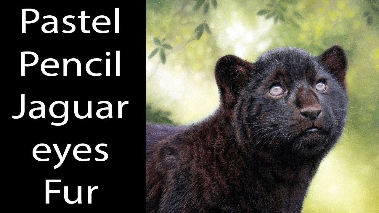 Pastel Pencil Lesson - Jaguar eyes