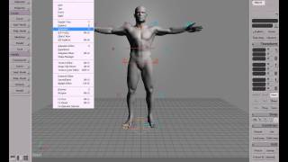 Softimage XSI Interface Overview