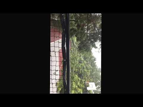 Hurricane Harvey Storm Damage Austin Texas