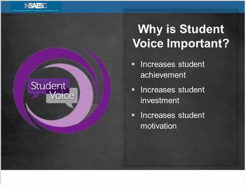 Engaging and Learning from Student Voice