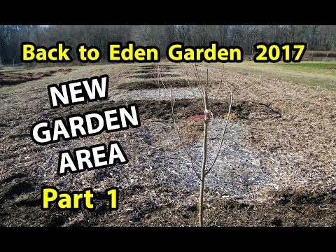 Back to Eden Method start a Organic Gardening 101 Improve Soil with Wood Chips Garden Series  Pt 1