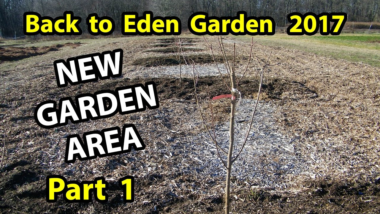 Back To Eden Method Start A Organic Gardening 101 Improve Soil With Wood Chips Garden Series Pt