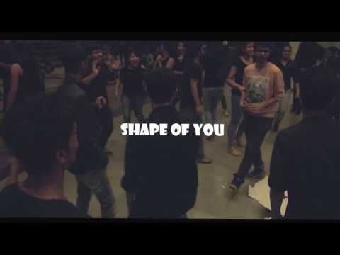 the SHAPE OF YOU guys @ IITR || Dance