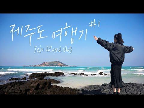 무비의 3박4일 제주도 여행 브이로그 1탄🌴 (ft. 바람소리) JEJU ISLAND VLOG  | 김무비 KIM MOVIE