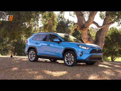 NEW 2019 Toyota RAV4 - Which One Would You Pick?