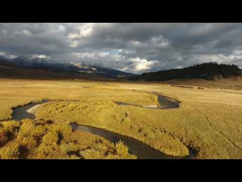 Wyoming Fall by Drone