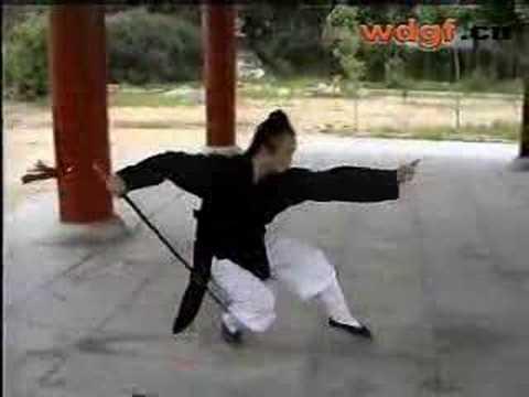 WUDANG KUNGFU | Wudang Seven Star Sword 七星剑