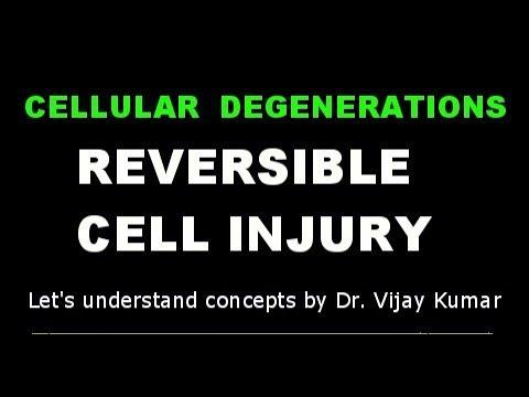 Reversible cell injury degeneration