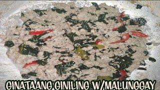 Ginataang Giniling W/Malunggay