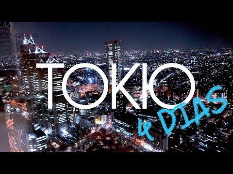 JAPON: TOKIO guia viaje 4 días - Karaoke, Akihabara, Sushi, Nikko...