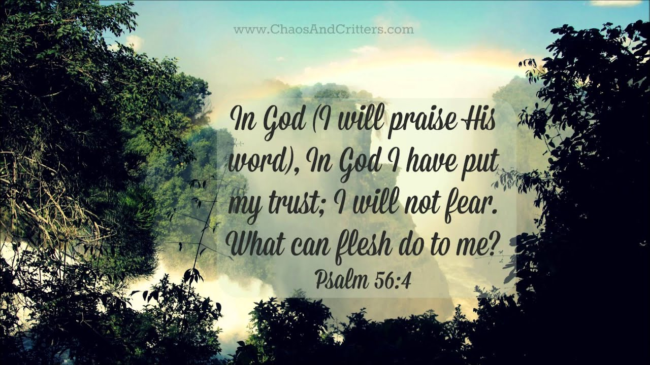 Daily Bible Verse - Psalm 56:4 - Daily Inspiration and ...