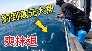 目標鎖定一尾破萬元的大魚讓你爽一年整船被剪到唉唉叫#赫馬士#釣魚#白金土魠