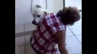 Собака от радости завалила хозяйку! Что он хочет?