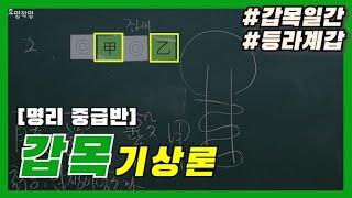 [중급] 1강 - 갑목(甲木) 기상론