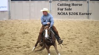 Cutting Horse For Sale Hot Dona 2011 Sorrel Mare by Boon Too Suen NCHA LTE $20K+
