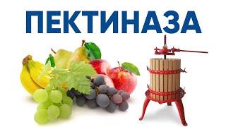 Пектиназа ENZIM - Фермент для соков и вина