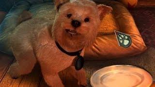 Fierce Tales: The Dog's Heart - Жестокие Истории Собачье Сердце