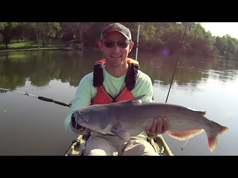 Light Tackle Catfishing With Chicken Breast For Bait: Fishing The Easy Way