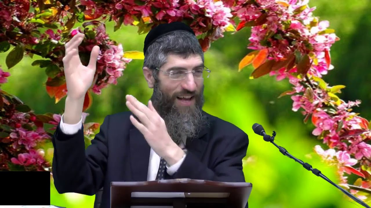 הרב יצחק יוסףנכד מרן   שידור HD   הלכות ברכות