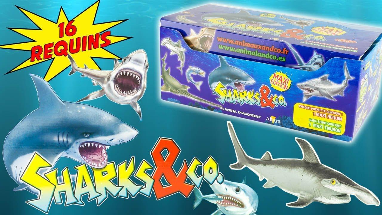 sharks co complete collection sharks blind bags surprise sharks co complete collection 16 sharks blind bags surprise altaya toy review juguetes tiburon