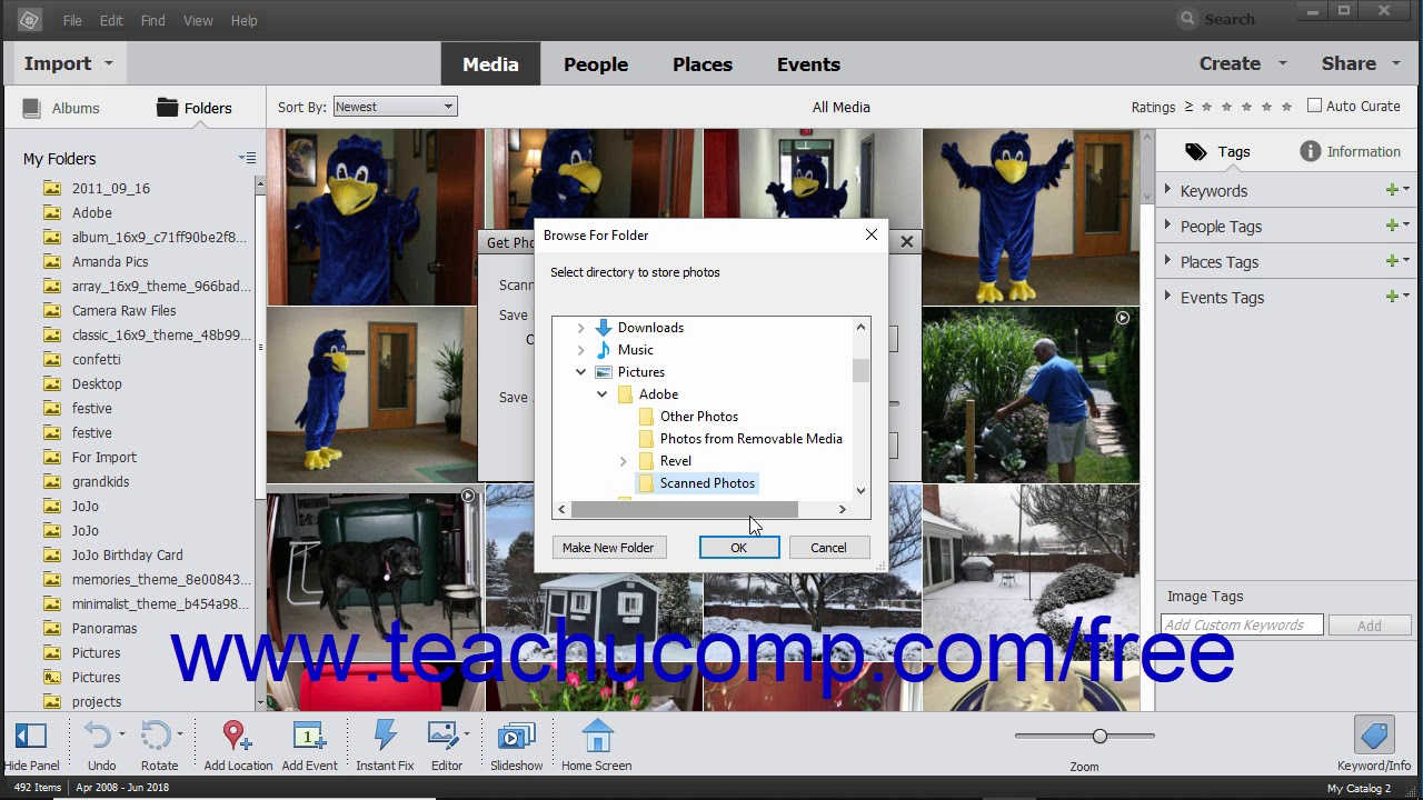 Import Photos from a Scanner in Photoshop Elements- Instructions