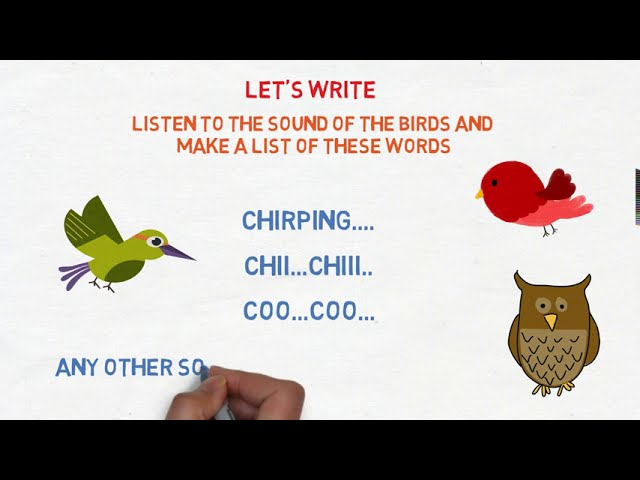 Bird Talk Poem Class 3rd English | NCERT / CBSE Class 3 Bird Talk