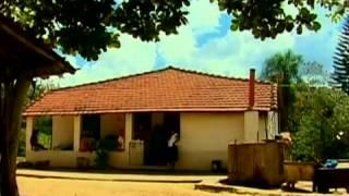 Nove irmãs unidas transformam sítio em propriedade rentável