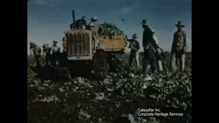 Caterpillar Diesel Track-Type Tractors Farm Lettuce in California | ca. 1950
