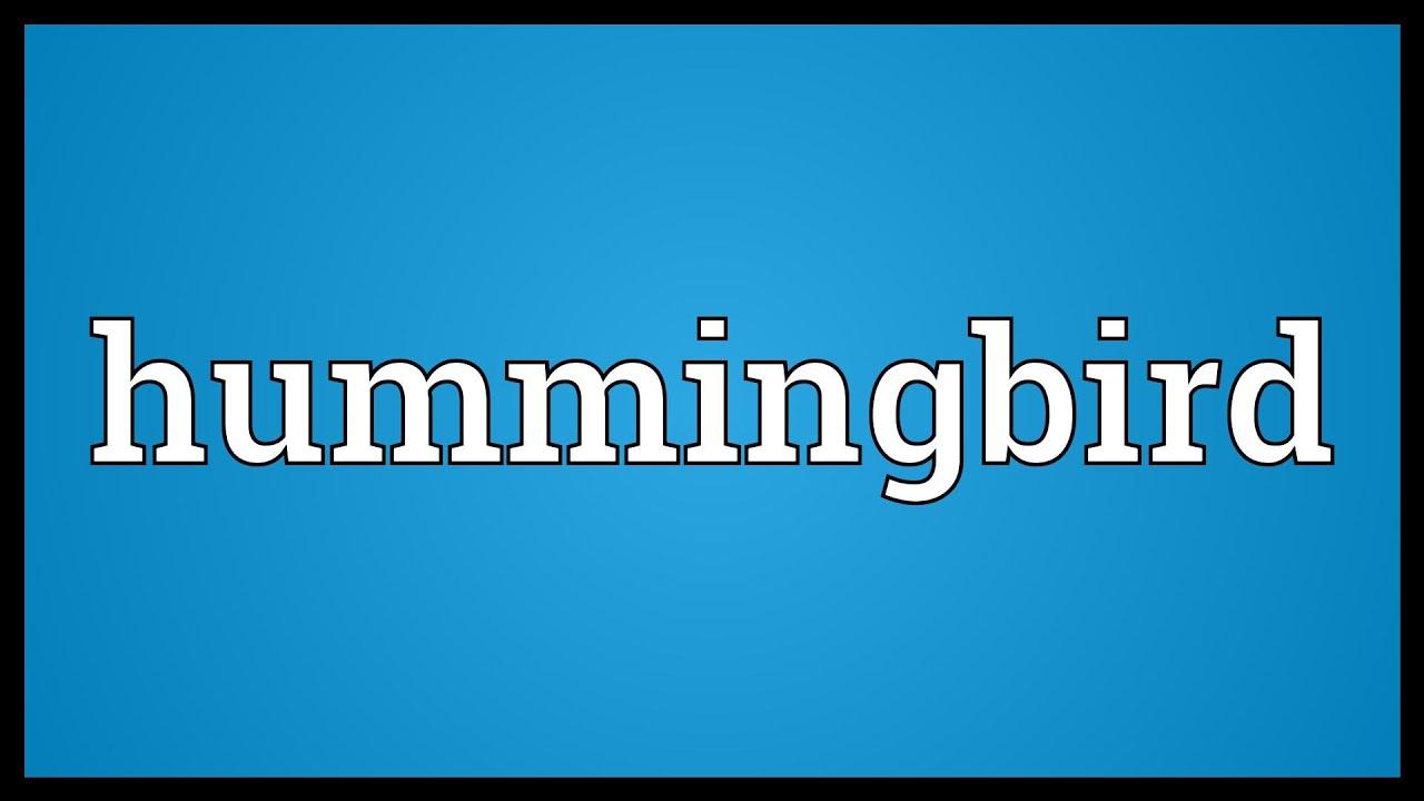 Hummingbird meaning youtube hummingbird meaning biocorpaavc Gallery