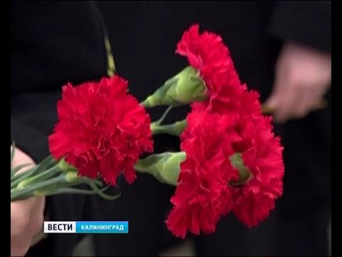 В Калининграде люди продолжают нести цветы на Площадь Победы